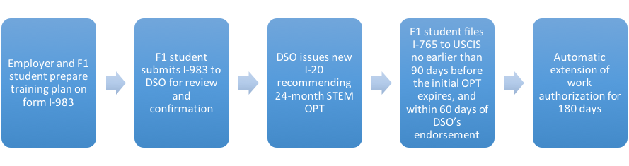 STEM OPT process